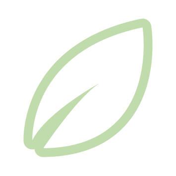 icone_2_ecologico